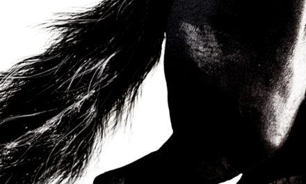 8/11(土)「Outsider」配信リリース!